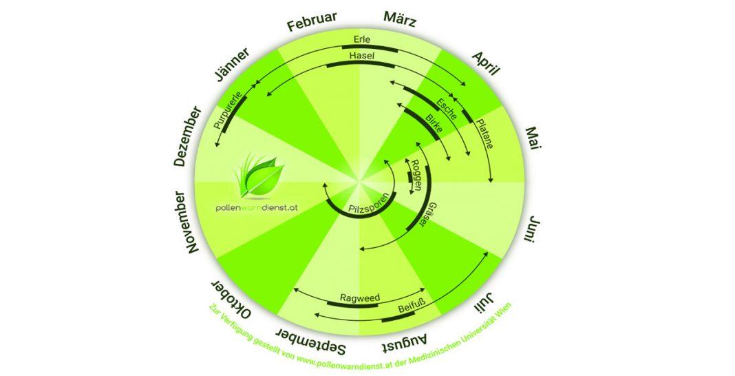 Pollen-im-Jahresverlauf21